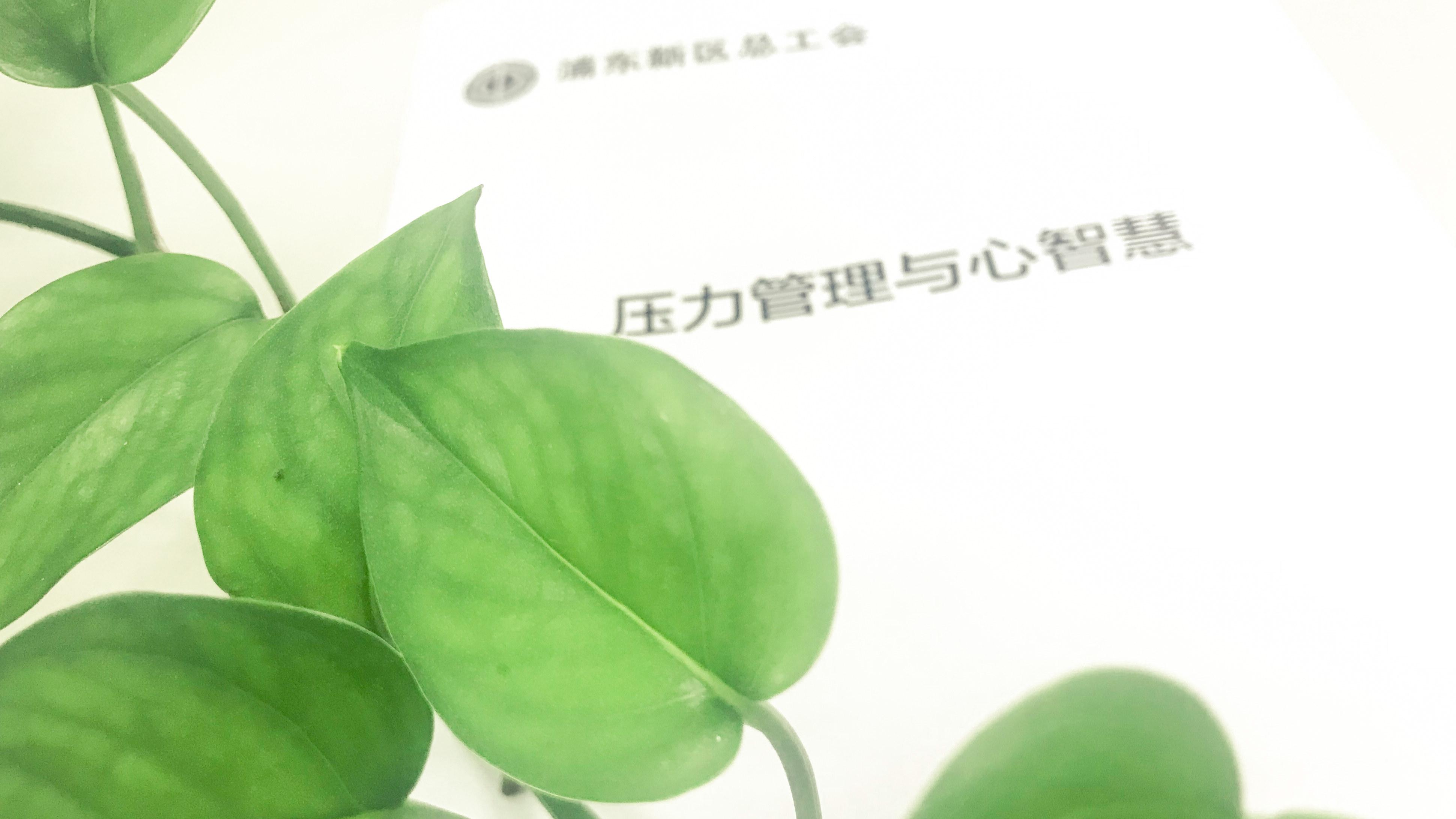 20190929110027_副本.jpg